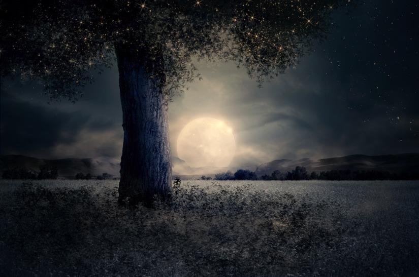 night-2539411_1280 (2)